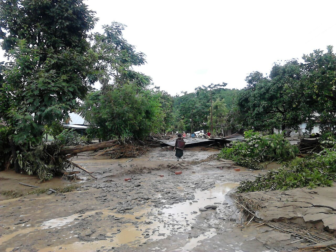 Destruction brought by flood in Chandel