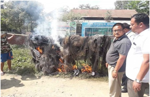Staff of Thoubal Forest division set ablaze several bird-catching nets