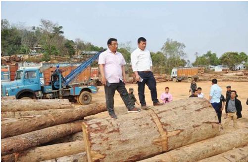 Shyamkumar seizes massive illegal timbers worth crores